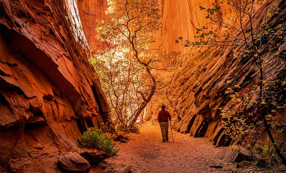 Capitol Reef National Park Master Class
